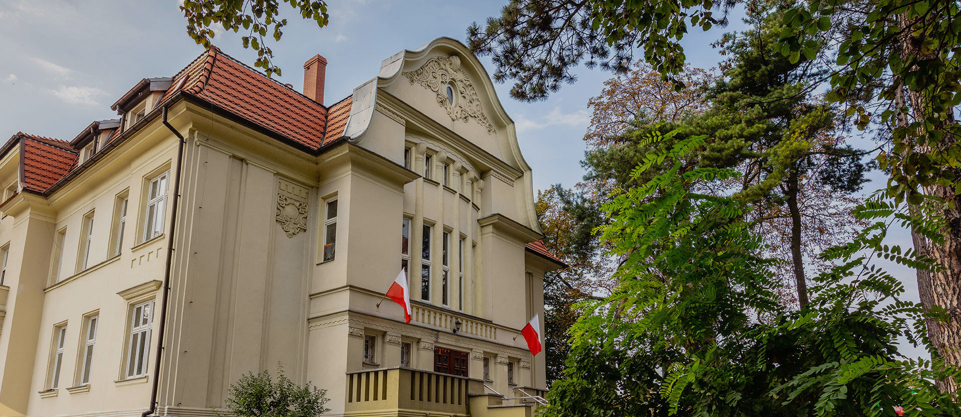 The library in Raciborz